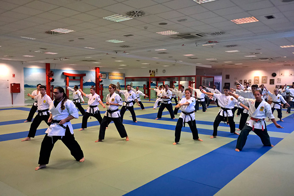 Clases Yawara Jitsu Sevilla